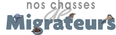 Nos chasses migrateurs